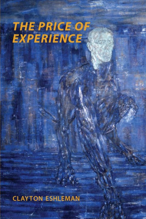 The Price of Experience cover